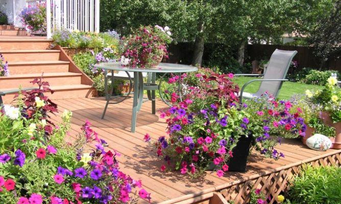 C mo hacer conseguir un jard n bonito con poco dinero - Fotos de jardines decorados ...